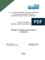 Proiect la Procese de Transfer de Caldura.doc