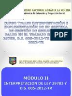 Interpretacion de Ley 29783