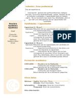 Curriculum Vitae Modelo3b Arena