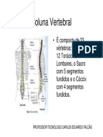 Anatomiarad.dacol.vertebral