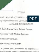 Evaluacion de Las Caracteristicas Fisicas de Esparrago Verde Durante Coccion Medianre Analisis de Imagenes