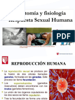RESPUESTA SEXUAL HUMANA.ppt