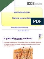 AA 3 Sistema Tegumentario, Añexos Cutaneos y Glandulas MET