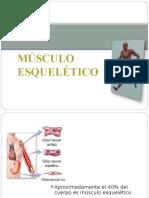 contracciondelmusculoesqueletico-131022171136-phpapp01.ppt