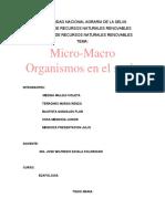 micro y macro-organismos