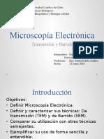 Microscopía Electrónica - Electron Microscopy