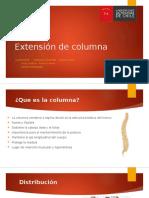 Extensión de Columna