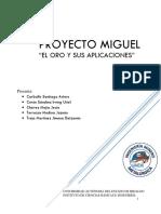 Proyecto Mina San Miguel