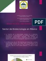 Sector Biotecnologico