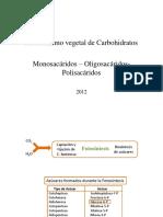 Mono-oligo y Polisacárdos
