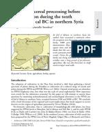Willcox y Stordeur Jerf El Ahmar Siria