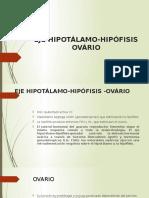 Eje Hipotálamo Hipófisis Testículo