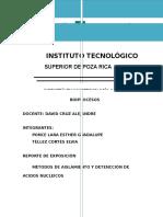 Métodos de Aislamiento y Detección de ADN