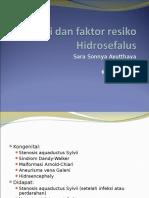 Etiologi Dan Faktor Resiko Hidrosefalus