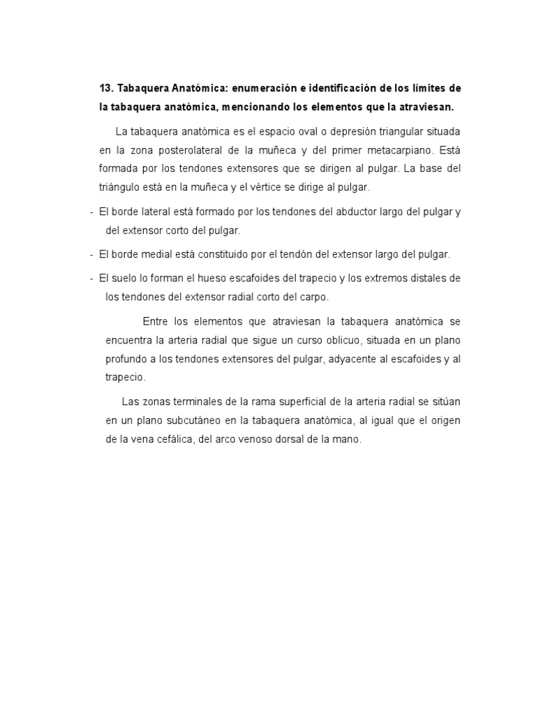 TABAQUERA ANATOMICA