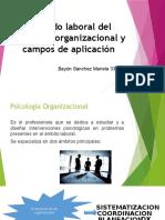 Psicologo organizacional