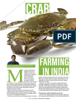 Mud carab farming in India