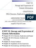 29. DNA Structure,Replication, And Repair(PART 1, WQS)