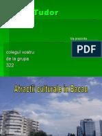 Atractii Culturale Bacau