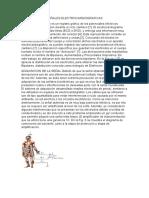 SEÑALES ELECTROCARDIOGRAFICAS.docx