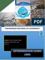 CLORO LIBRE.pdf