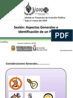 Aspectos generales e identificación de un PIP
