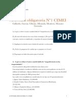 Actividad Obligatoria Nº1 CIMEI