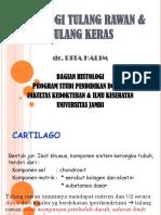 HISTOLOGI TULANG KERAS & RAWAN.pdf (dr.Rita).pdf