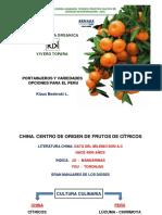 Portainjertos y Variedades.pdf