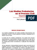 5) Los Medios Probatorios en El Proceso Civil. Disposiciones Generales - DPC II (2016-I)
