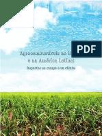 Agrocombustíveis no Brasil e na América Latina - Impactos no campo e na cidade.pdf