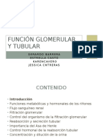 Función Glomerular y Tubular.