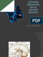 Sistema Nervioso en el Recién Nacido.