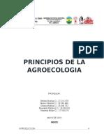 PRINCIPIOS-AGROECOLOGICOS-1.docx