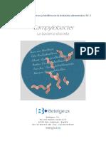Campylobacter Bacteria Discreta