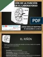 1.- Evaluacion de La Funcion Renal