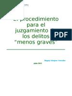 Delitos Menos Graves-Foro COPP1