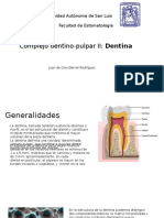 Dentina.pptx