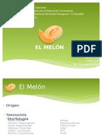 Melón-Diapositivas