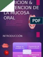 Nutricion Prevencion de La Mucosa Oral Autoguardado