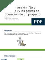 La Inversión (Fija y Diferida) (1)
