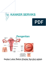 kankerserviks-110112015056-phpapp01