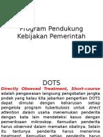 Program Pendukung Kebijakan Pemerintah