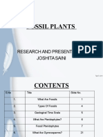 FOSSIL PLANTS Updated