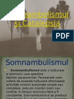 Somnambolismul şi Catalepsia