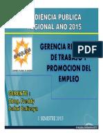 Gerencia Trabajo Audiencia Publica 2015