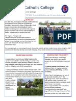 Newsletter 217