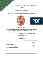 Trabajo de Investigacion Ccatcca