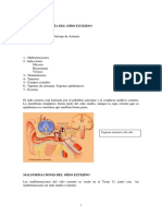 Tema 3 Patologia Oido Externo