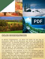 2. Ciclos Biogeoquímicos
